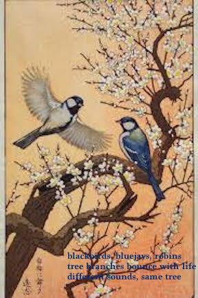 birds-haiga