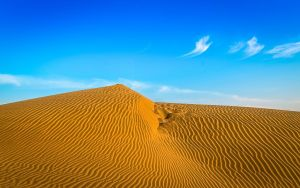 The_Great_Indian_Thar_Desert