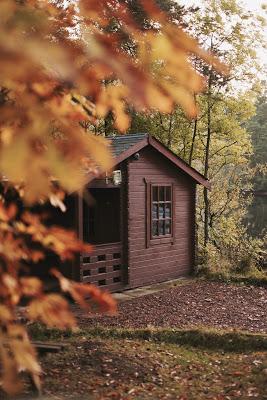 autumn colors by Kyle Bonallo