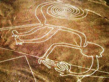 Nazca lines (monkey)