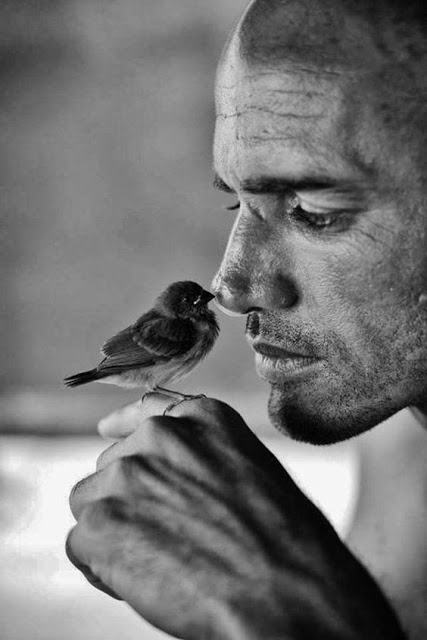man and bird