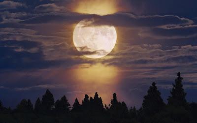 Bright-Moon