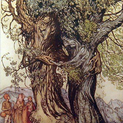 Tree Myth