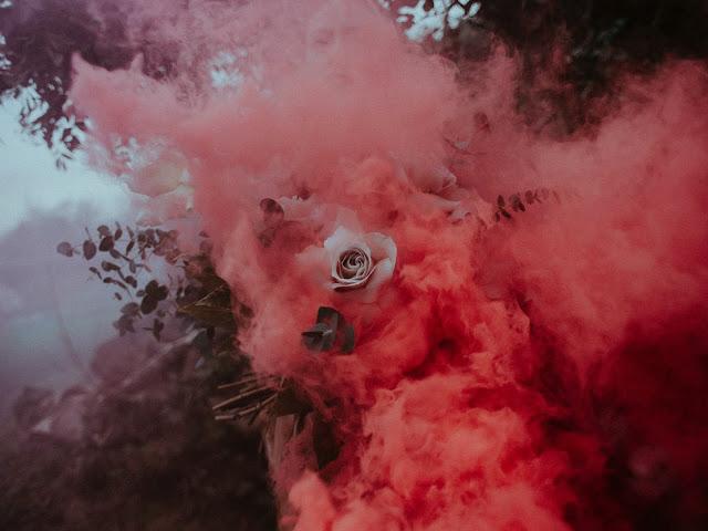 white-rose-and-pink-smoke-3576112